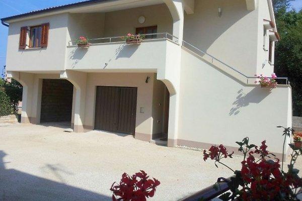 guest House Marino in Tar-Vabriga - immagine 1