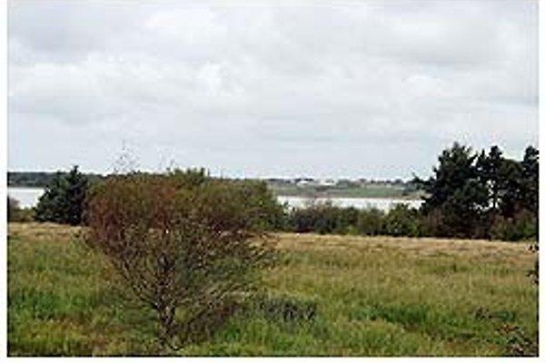 Lyngs strand in Thyholm - Bild 1