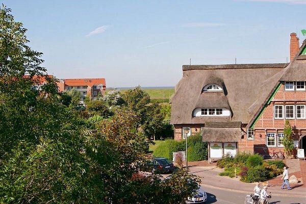 Meerblick in Dorum in Dorum-Neufeld - Bild 1