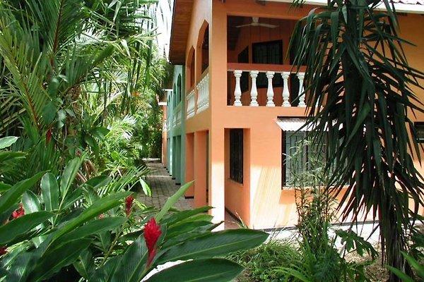 Casa Lora, Holiday Apartments en Playa Del Coco - imágen 1