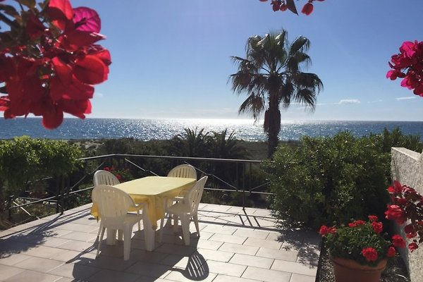 Ferienhaus direkt  am Meer in San Nicolao - Bild 1