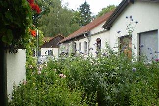 Studio in Mollhagen