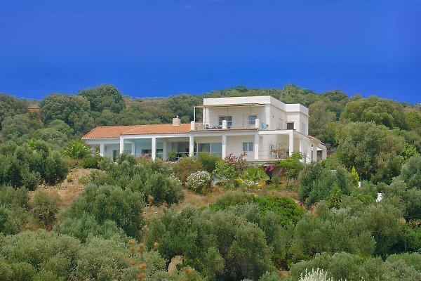 Mod. Appartement in Olivenhain in Lahanata - immagine 1