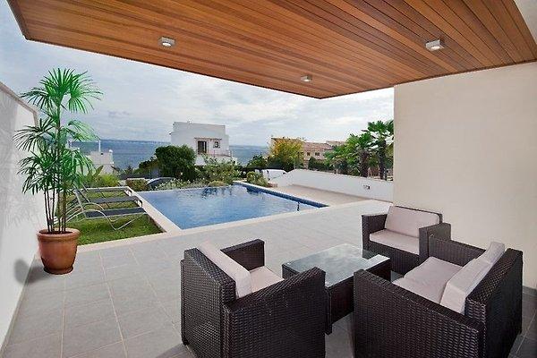 Villa droom van mallorca vakantiehuis in port d alc dia huren - Terras van droom ...
