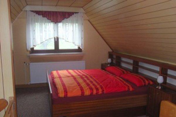 Ferienhaus Seidler in Tissa - Bild 1