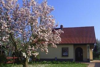 Ferienhaus Seidler