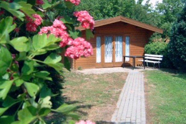 Gasthaus Hemmerling Raben in Raben - Bild 1