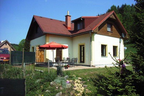 Haus, terrasse und garten