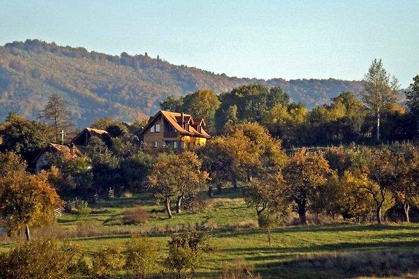 ••• Villa Zollo ••• Transylvanie à Vale - Image 1