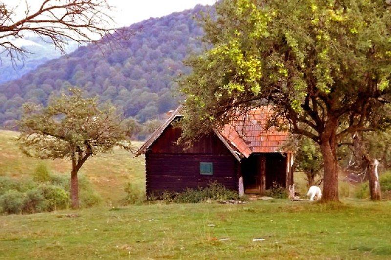 • Cozo Fantu • einsame Berghütte mieten in den Karpaten Rumäniens
