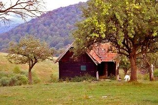 • COZO FANTU • Karpaten Berghütte