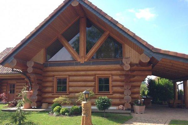 Naturstammhaus am Haff in Ueckermünde - immagine 1