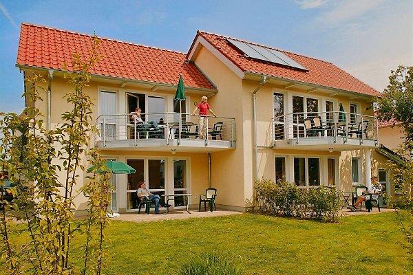 Inselglück à Heringsdorf - Image 1
