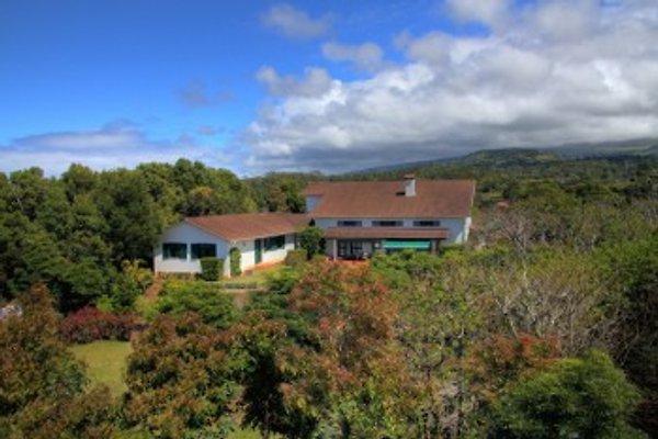 Casa da Madalena in Pico - immagine 1