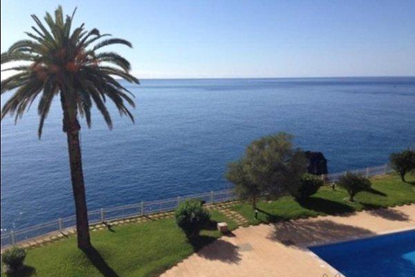 Cliff in Funchal - Bild 1