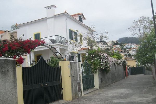 Cottage Nook à Funchal - Image 1