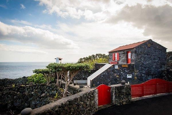 Cottage Adega de Canadas in Pico - immagine 1
