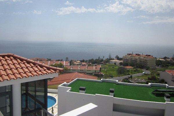 Appartement Paradisus I à Canico de Baixo - Image 1