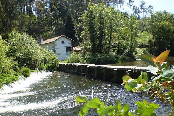 Landhaus Casa da Azenha in Esposende - Bild 1