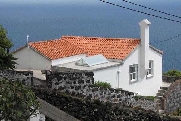 Cottage Casa Pontas Negras in Pico - immagine 1