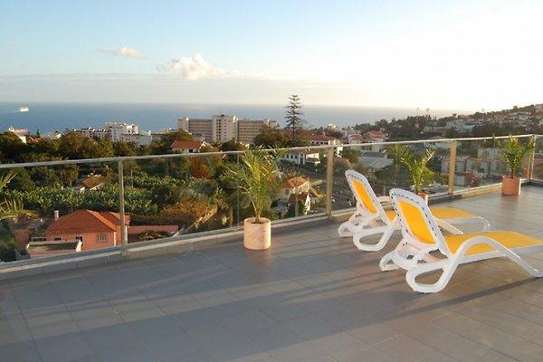 Apartamento Panoramica en Funchal - imágen 1