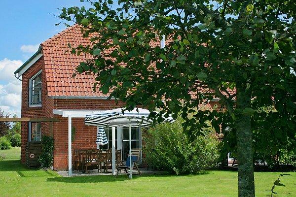 Garten mit Terrasse am Haus