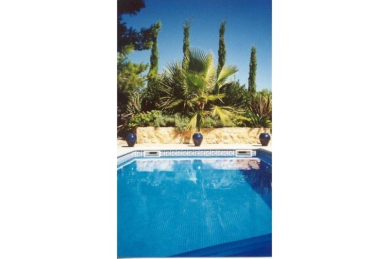 Villa JARDIN TROPICAL  Calafat Retreats