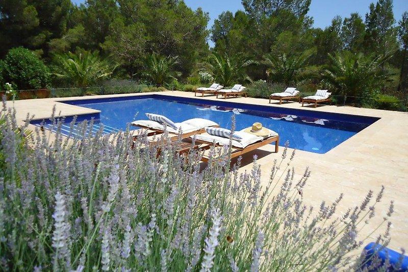 Villa DOAH Calafat Retreats