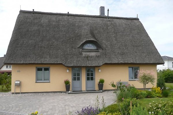 Traumhaus 88 in Börgerende - immagine 1