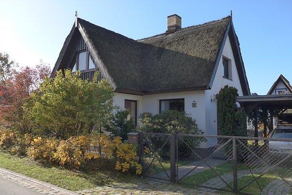 Haus Darßwald en Prerow - imágen 1
