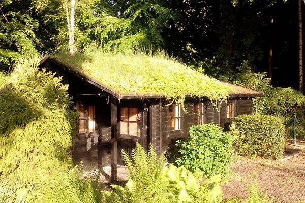 Haus Fördeidyll à Heikendorf - Image 1