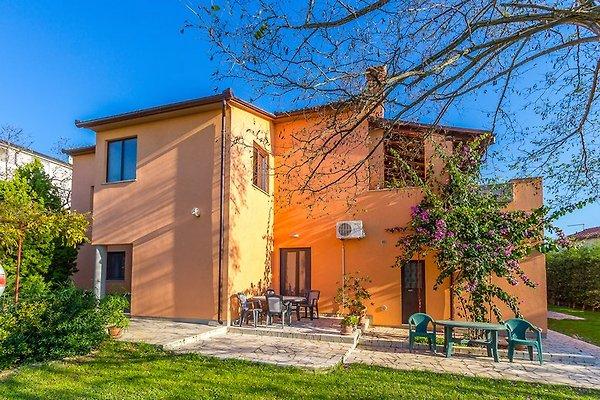 Appartamento 959-1 in Pola - immagine 1