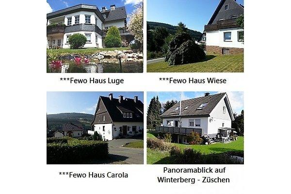 ***Ferienwohnungen Ferienwelt Winterberg