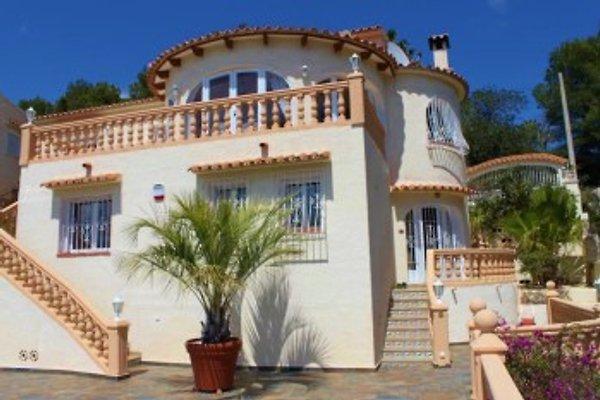 Casa Delfino in Benissa - immagine 1