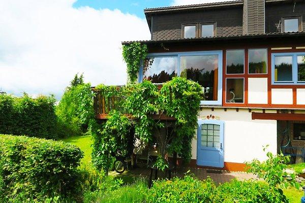 Wie im Himmel à Hatzfeld - Image 1