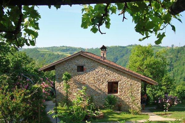 Ansicht des Ferienhauses