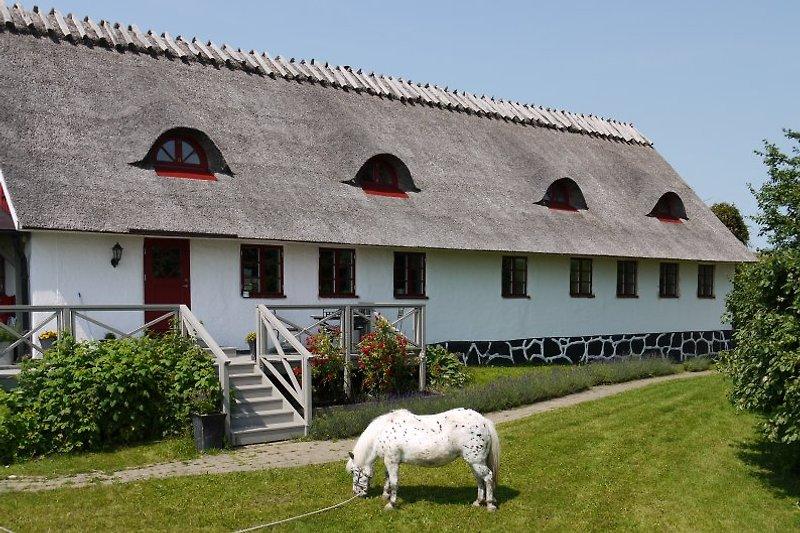Das Haus mit zwei Ferienwohnungen