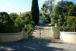 Villa Casa Mimosa