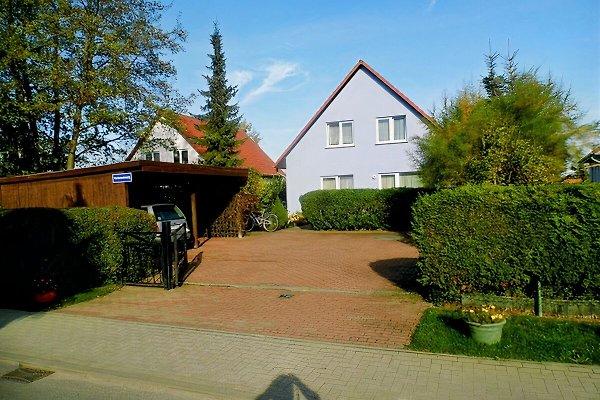 Ferienwohnung Familie Körner à Ribnitz-Damgarten - Image 1