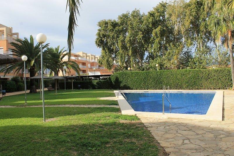 Gemeinschaft Pool und Garten