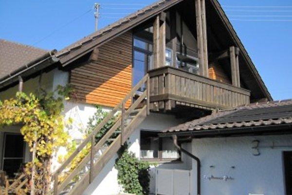 Ferienwohnung in Woringen in Woringen - Bild 1