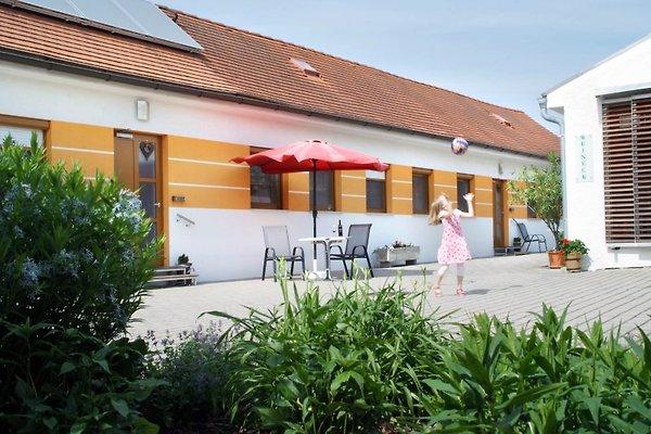 Weingut-Ferienwohnungen KRACHE à Apetlon - Image 1