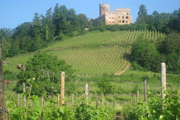Gites du Relais des Vignes  en Kintzheim - imágen 1