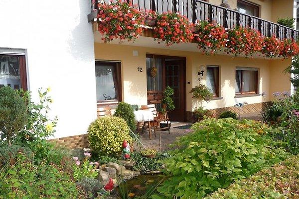 Ferienwohnung Andre in Schönecken - immagine 1