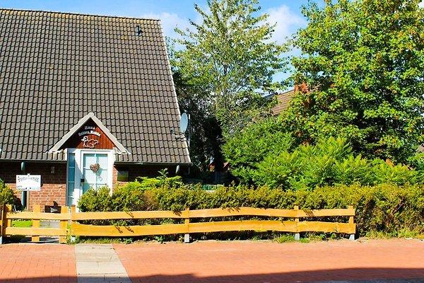 Ferienhaus Ostsee-Robbe à Schönberg - Image 1