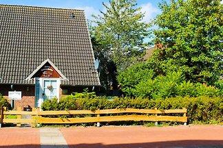 Strandnahes Ferienhaus Ostsee-Robbe