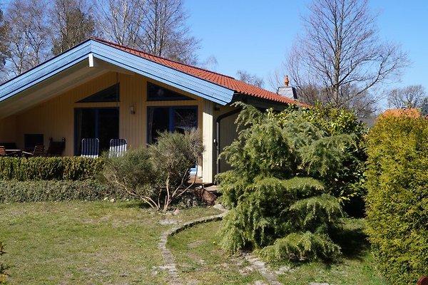 Ferienhaus Waldhus à Prerow - Image 1