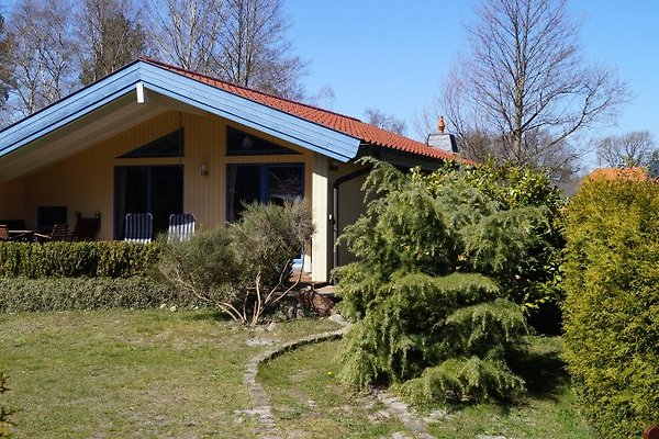 Ferienhaus Waldhus in Prerow - immagine 1