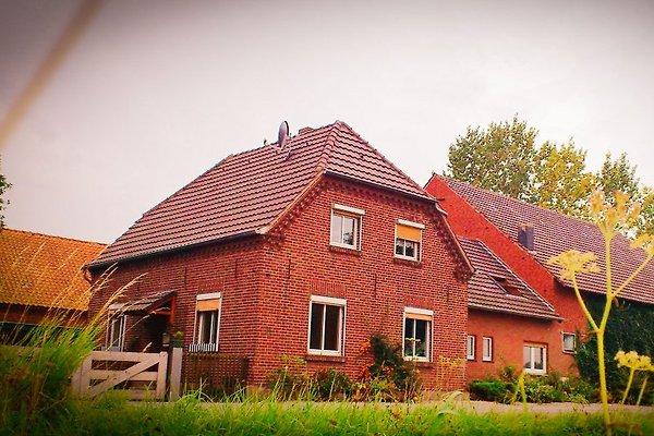 Am Balberger Ley en Kervenheim - imágen 1