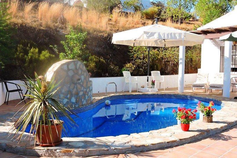 Casa Isidora - Pool